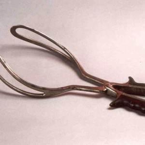 forceps instrument (www.fmed.uba.ar)
