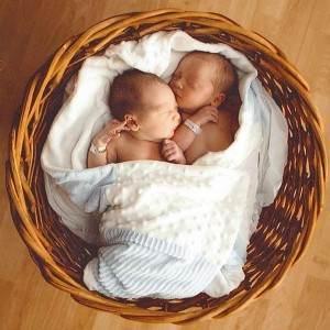gemeni bebelusi (www.preovena.org)