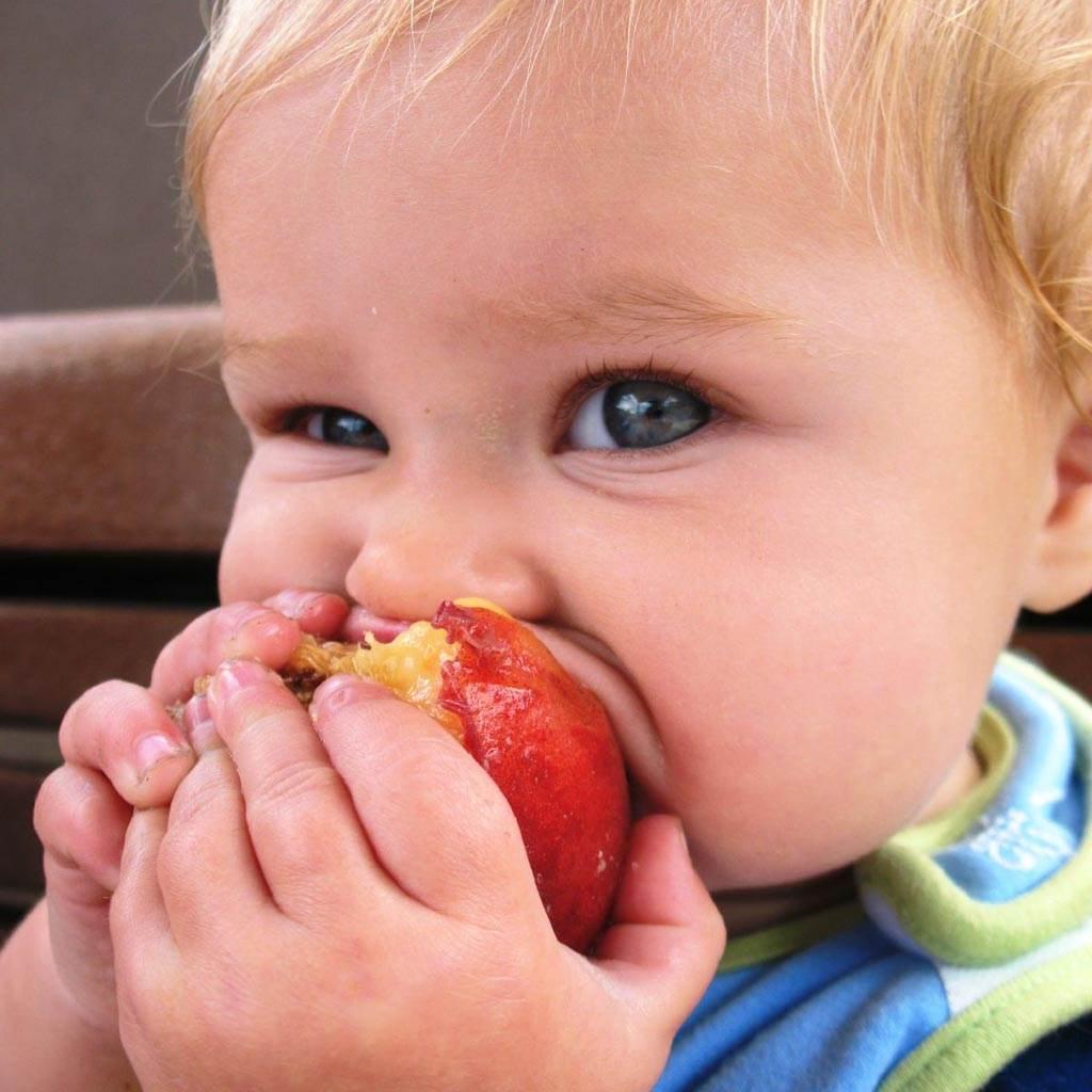 bebelus mar alimentatie (http://farm3.static.flickr.com)