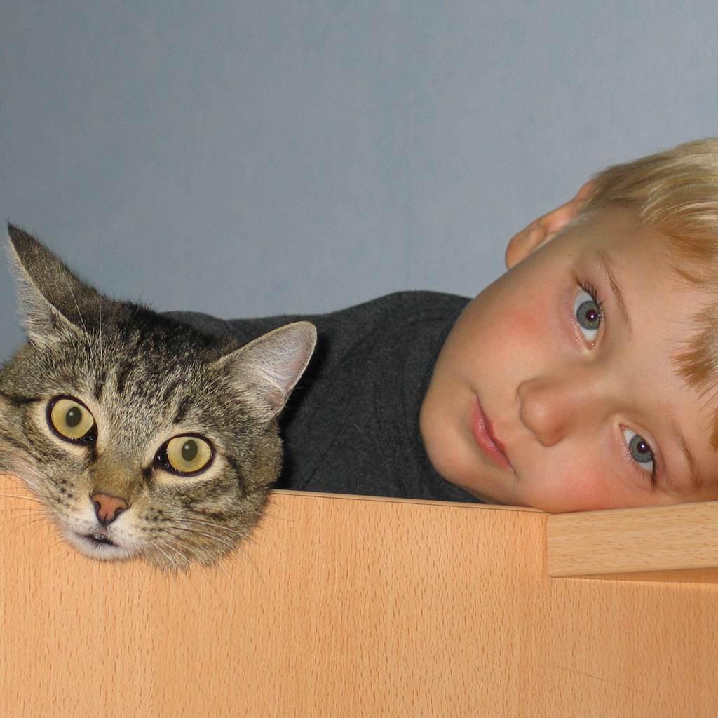 copil cu pisica (www.o0.eu.imgsre.ru)