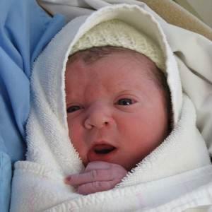 nou-nascut (http://fc08.deviantart.net)