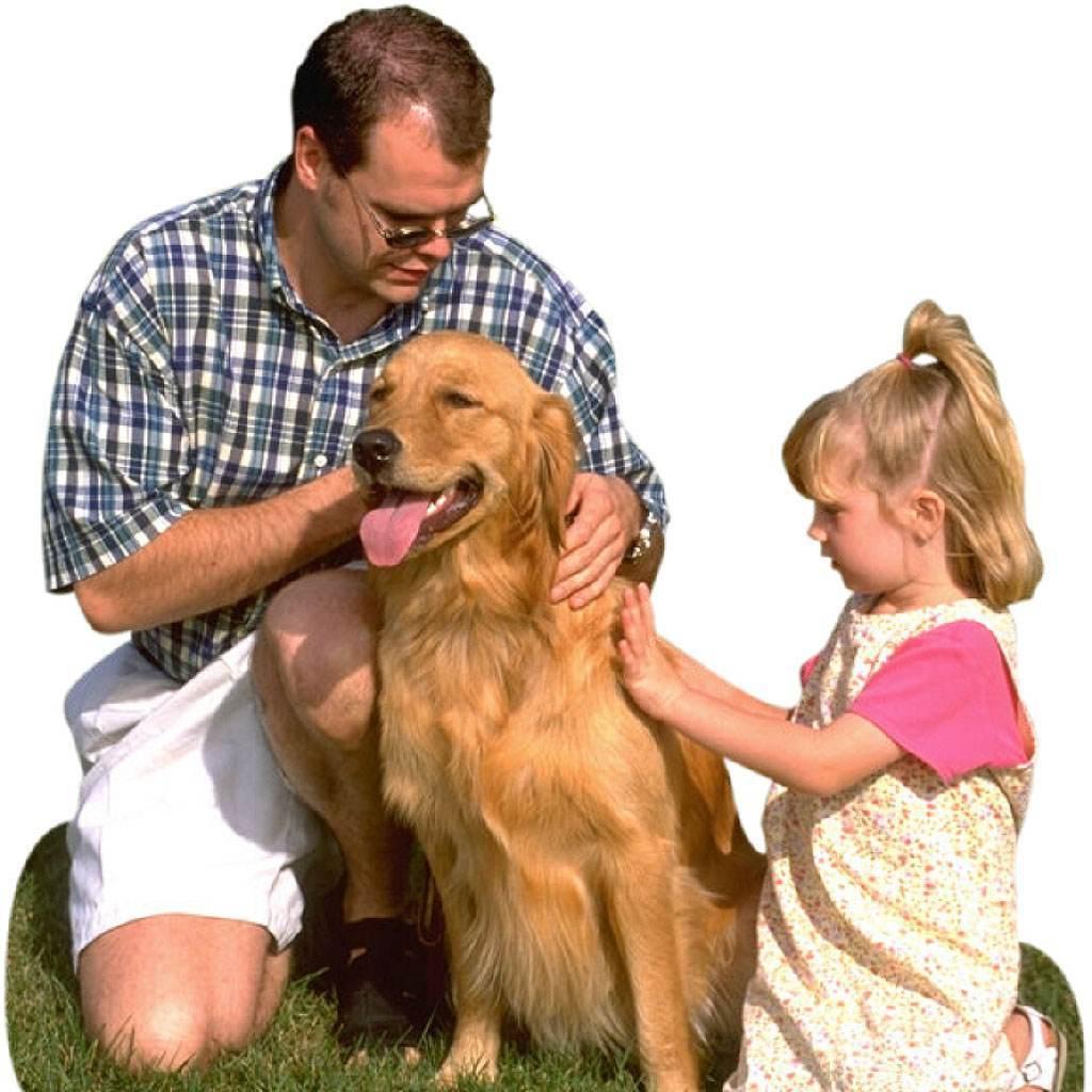 copil cu cainele (www.nvo.com)