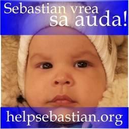 helpsebastian.org-250